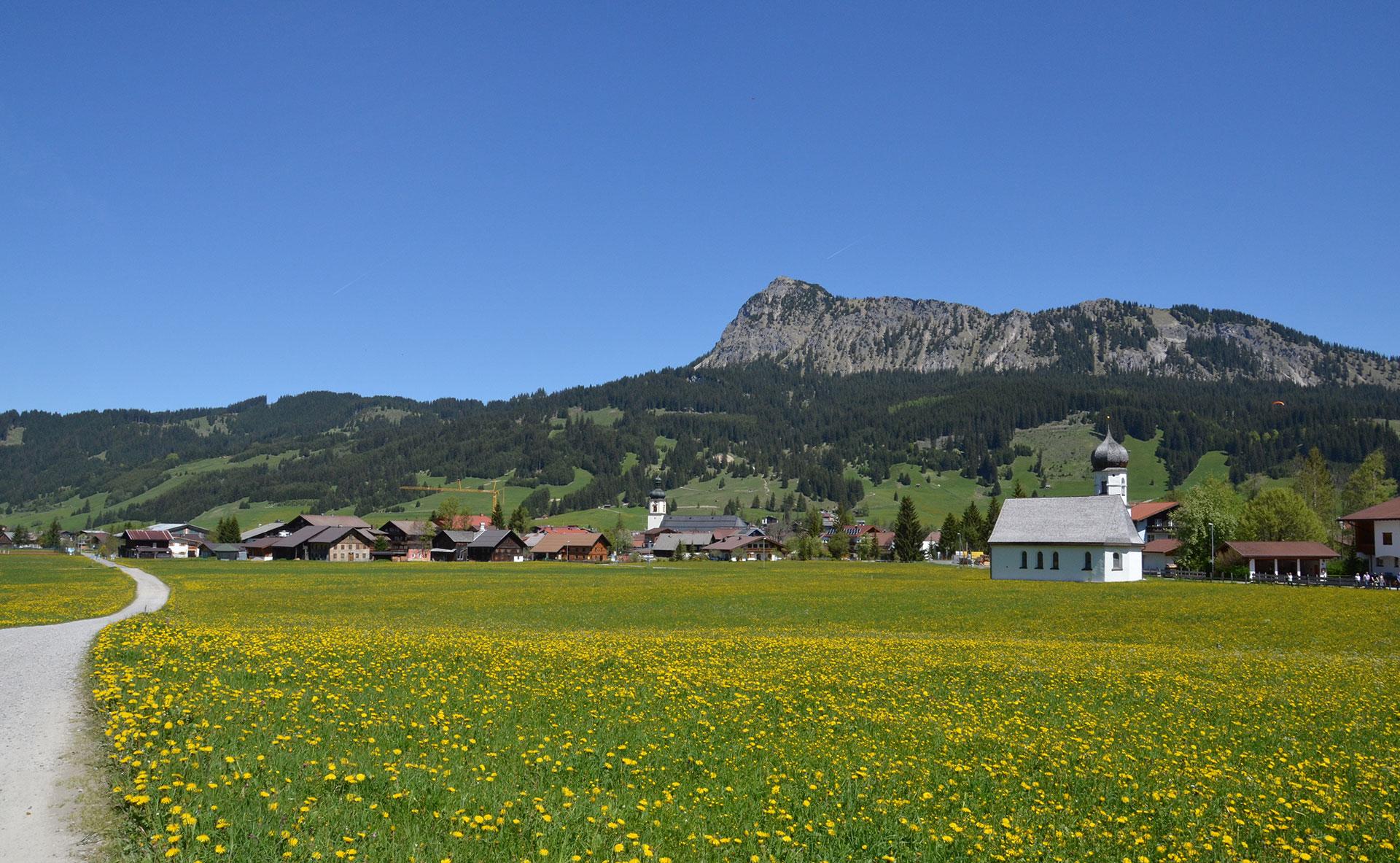 Urlaub im Tannheimer Tal im Bio-Bauernhof Vilshof